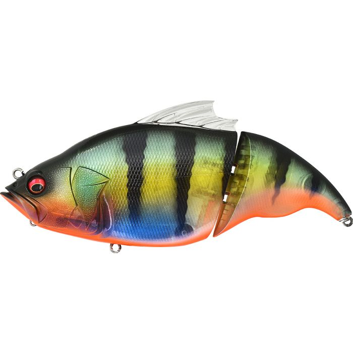 VATALION 190 SS - GP REDFIN PERCH
