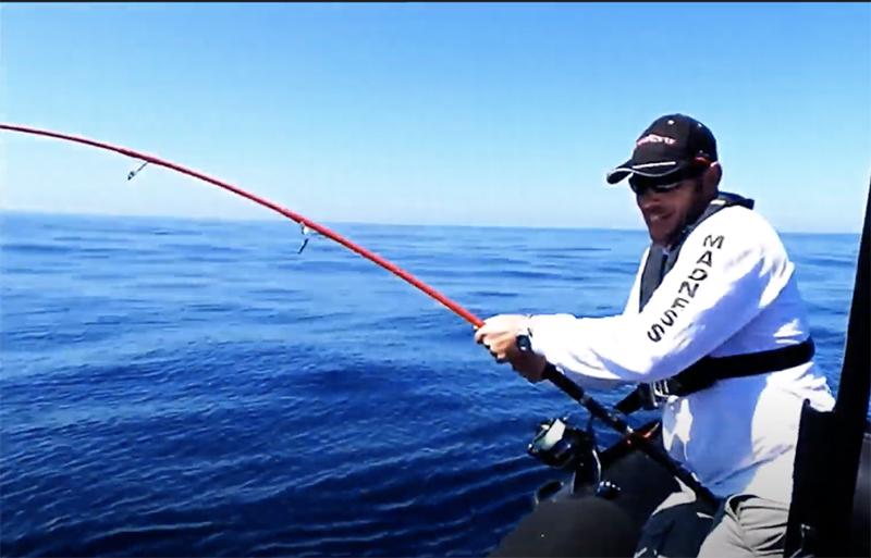 Thon sur la Demoniac Tuna