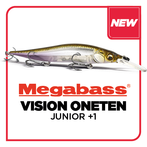 VISION 110 +1 JUNIOR